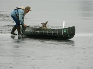 Man rescues deer near Cotton