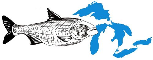 Asian Carp threaten Great Lakes