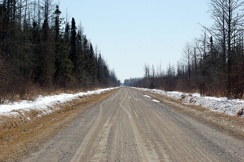 Owl Avenue in northern Minnesota's Sax-Zim bog.