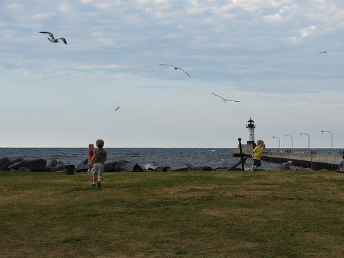 Our boys chase seagulls at Canal Park in Duluth, Minnesota, in 2012.