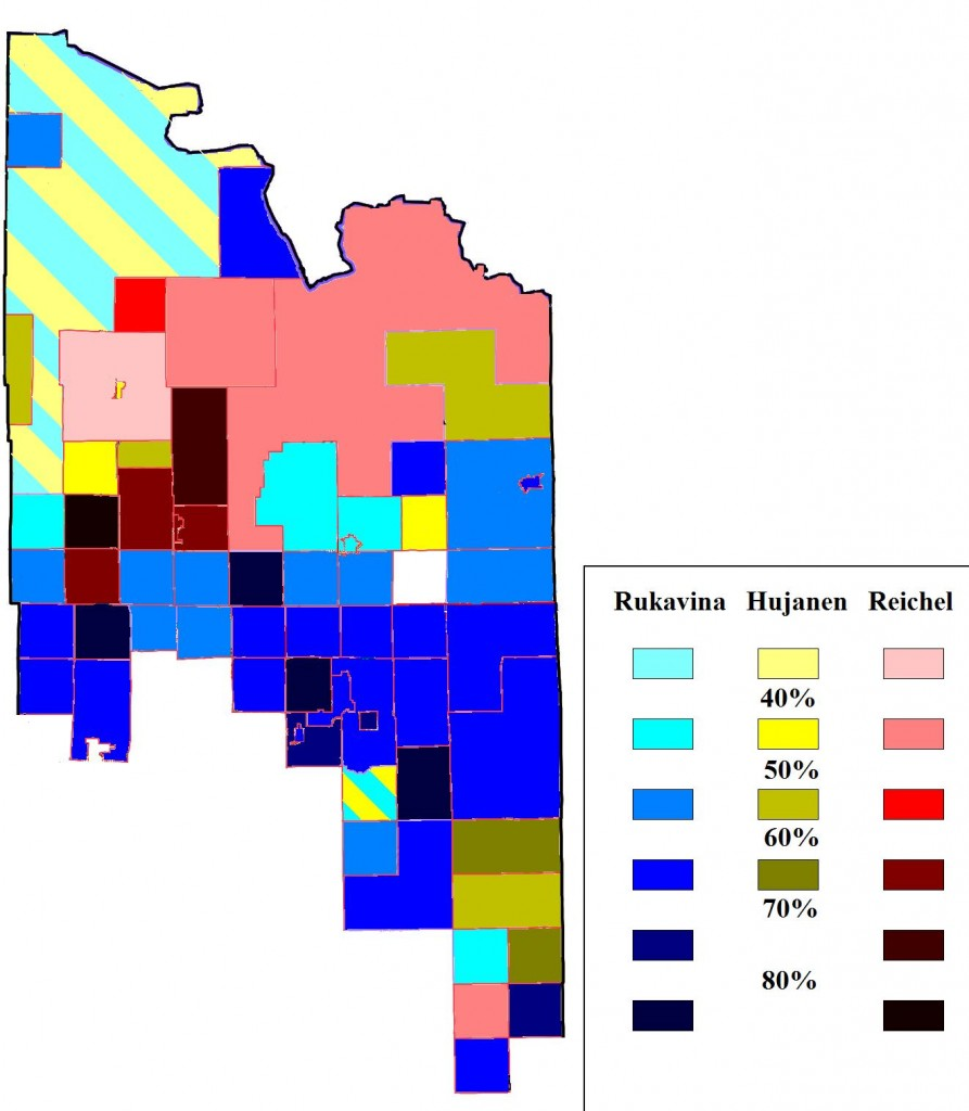 2014 St Louis County Primary