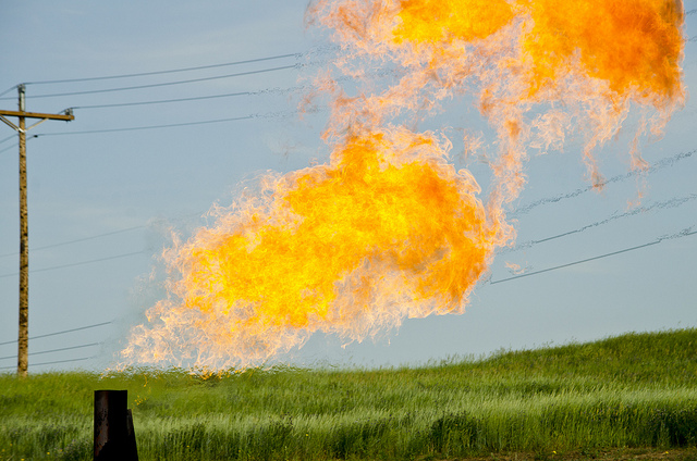 Natural gas flares from a flare-head at the Orvis State well on the Evanson family farm in McKenzie County, North Dakota, east of Arnegard and west of Watford City. (PHOTO: Tim Evanson, Flickr Creative Commons)