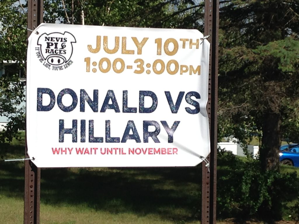 The annual pig races in Nevis, Minnesota, will feature a hoof-off between pigs named for 2016 presidential candidates Donald Trump and Hillary Clinton. PHOTO: Christina Hiatt Brown