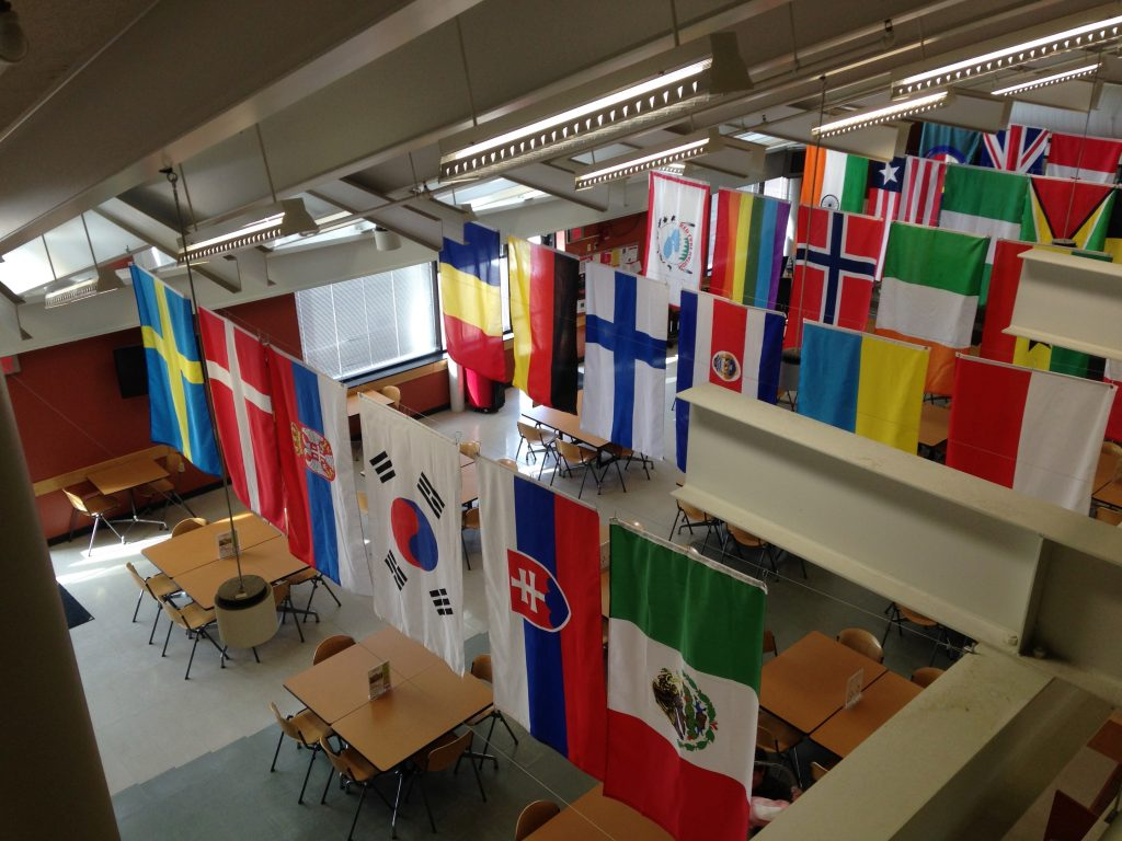 International flags represent the national origins of students at Hibbing Community College. (Aaron J. Brown)