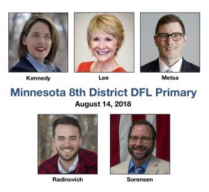 Calculating Minnesota's 8th District DFL primary